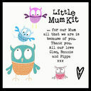Little Mum Kit additional 13