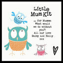 Little Mum Kit additional 12