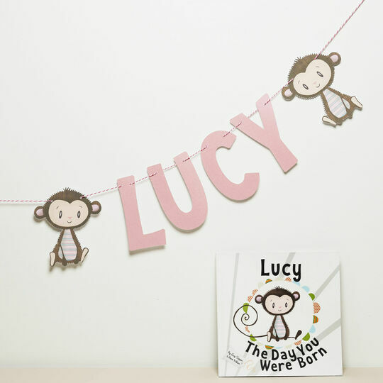 Personalised 'Day You Were Born' Themed Name Bunting
