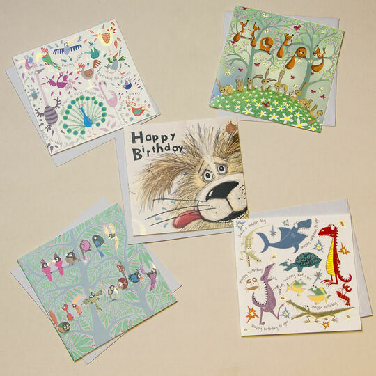 Illustrated Birthday Cards (Set Of Five)